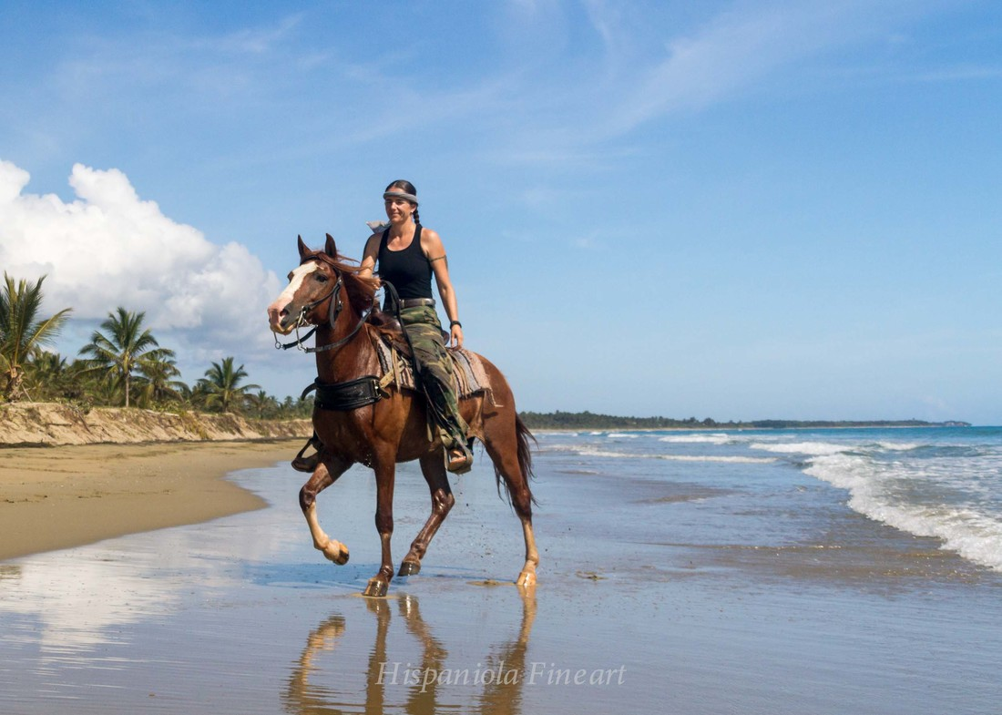 Beach Horseback Ride